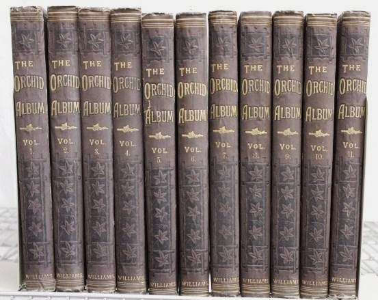 11 Volumes, The Orchid Albums, 1882-97; By R.Warner, B.S. Williams; Plates By John Nugent Fitch. Sold For $9,750.