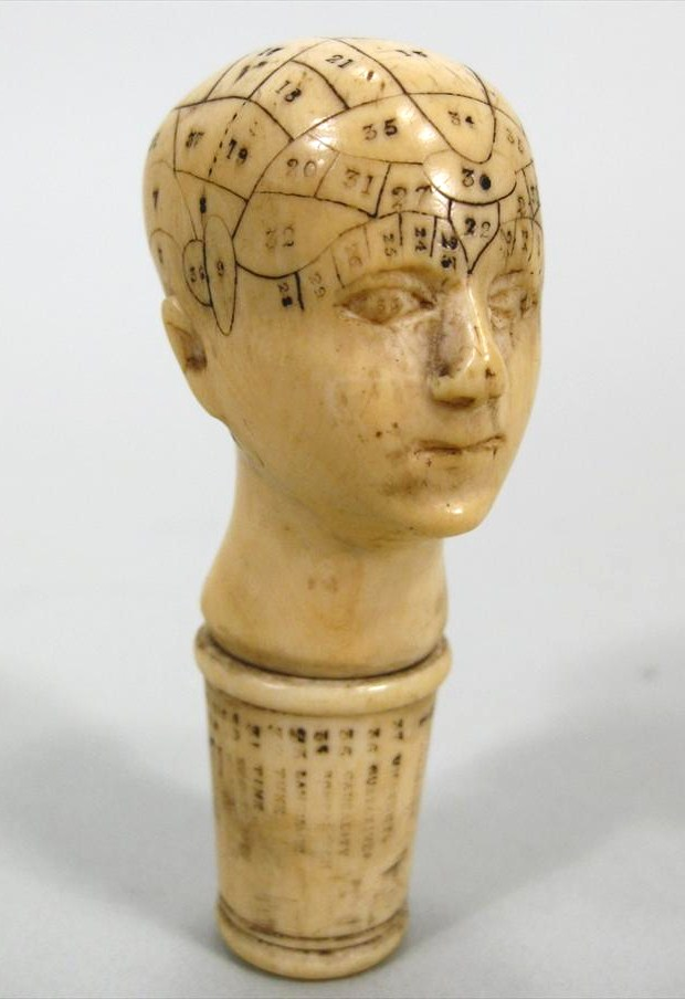 Carved Ivory Phrenology Head, English, 19th C. Sold For $1,687.