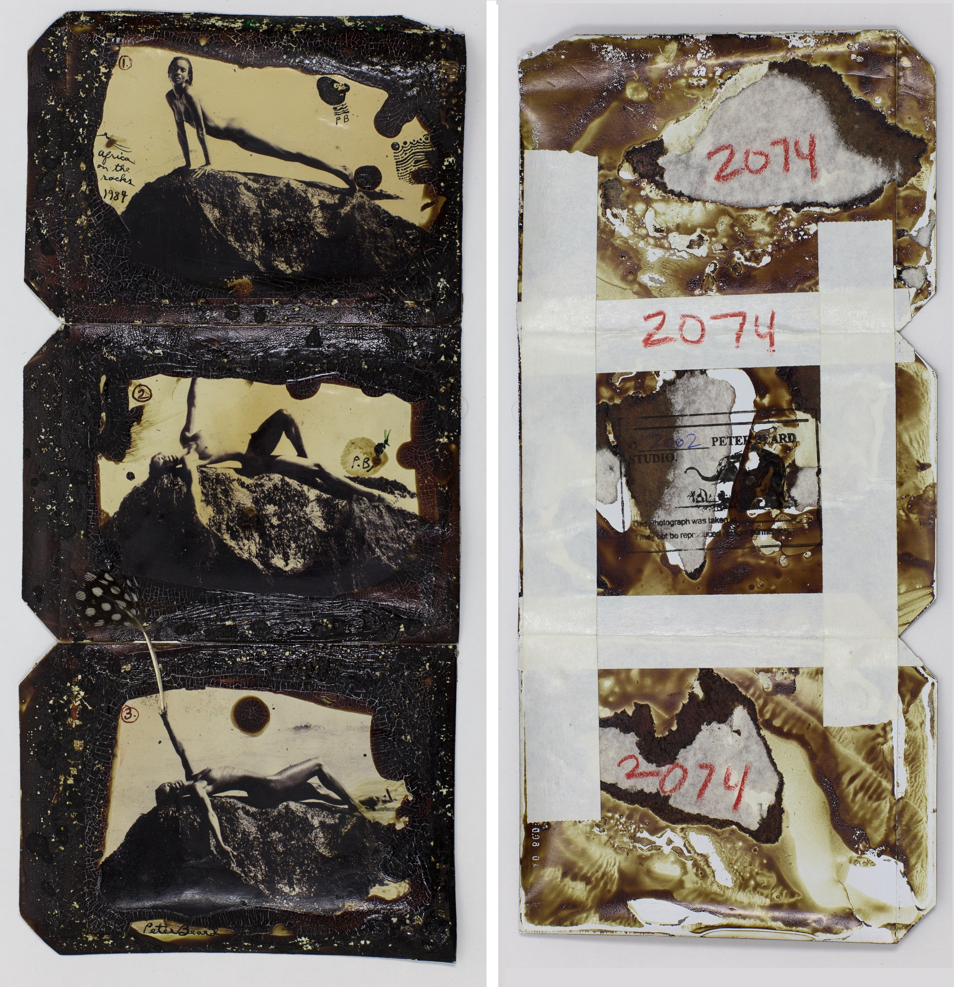 Peter Beard, Africa On The Rocks (triptych) 1984 2002. Sold For $15,000 At Capsule Gallery Auction